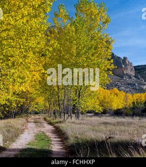Autumn in the Riaza Canyon Natural Park. Montejo de la Vega de la Serrezuela. Segovia. Castilla Leon. Spain. Europe. - Stock Photo