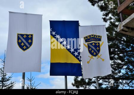 National and military army flags with fleur de lys and swords of Bosnia Herzegovina - Stock Photo