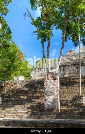 Stela 88 on Stairway of Structure 13, Calakmul Mayan Archaeological site, Campeche, Mexico - Stock Photo