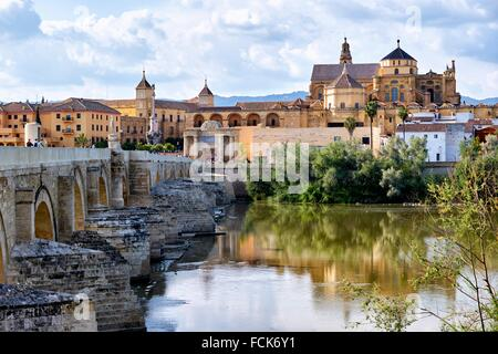 Panorama of Cordoba and the old Roman bridge, Andalusia, Spain - Stock Photo