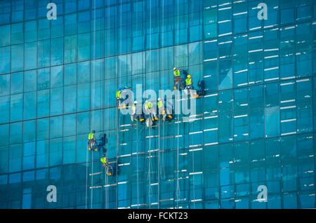 Abseiling window cleaners descend on ropes down the glass structure of a high rise building. Cape Town, South Africa. - Stock Photo