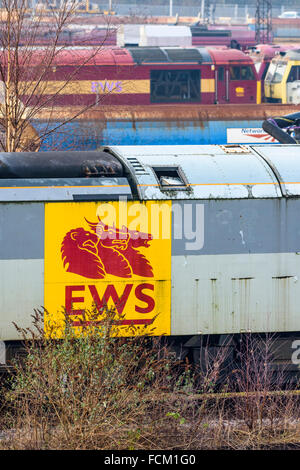 English Welsh and Scottish Railway logo on the side of a disused class 60 diesel loco at Toton depot - Stock Photo