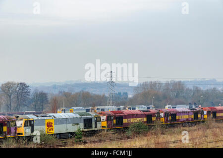 A row of disused class 60 diesel locos at Toton depot in Nottinghamshire - Stock Photo