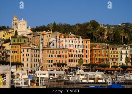 Buildings on the sea front and San Giacomo church in the background, Santa Margherita Ligure, Genova, Liguria, Italy, - Stock Photo