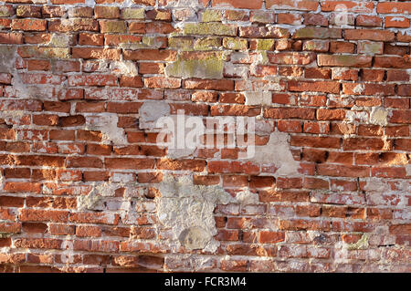 Old weathered brick wall fragment .