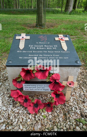 A memorial to two Victoria Cross winners in Delville Wood, Longuval, close to the Museum to South African Forces' - Stock Photo