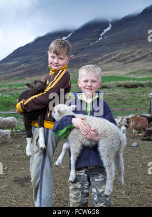 Boys with young lambs, Audbrekka farm, Horgardalur valley, Iceland - Stock Photo