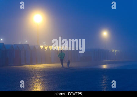 Man jogging with dog by beach huts, Hove promenade, misty morning, streetlghts - Stock Photo