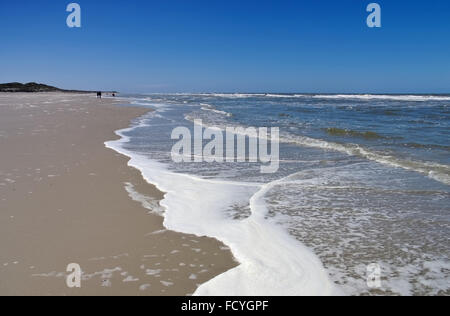 ostfriesische Insel Langeoog, der Strand - island Langeoog North Sea, the beach - Stock Photo