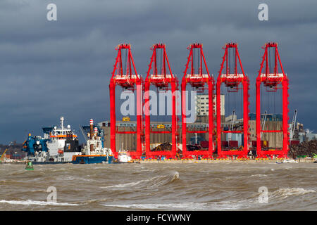 Gale force winds and heavy seas in Liverpool. Ship to shore cranes STS semi-automated Cantilever Rail Mounted Gantry - Stock Photo