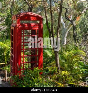 Telephone Box In The Woods Gibraltar - Stock Photo