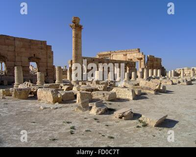 The Agora Roman Empire ruins in the ancient Semitic city of Palmyra June 16, 2006 in present-day Tadmur, Homs, Syria. - Stock Photo