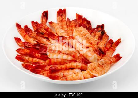 plenty of boiled shrimps on a white plate - Stock Photo