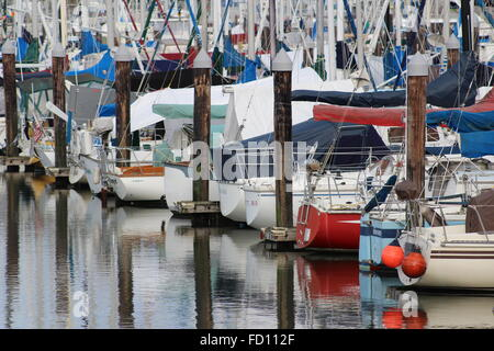 Boats and pilings in a marina. - Stock Photo