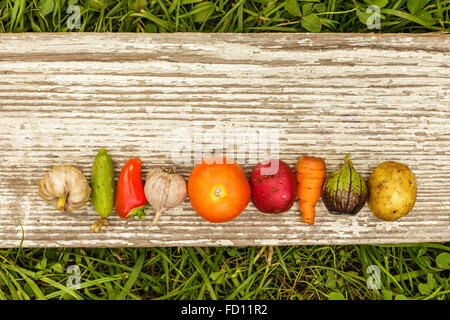 vegetables laid out in a row with an empty space for text on a gray background of wooden planks - Stock Photo