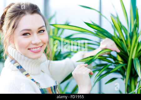 Smiling lovely young woman gardener in uniform working and taking care of ficus in greenhouse - Stock Photo
