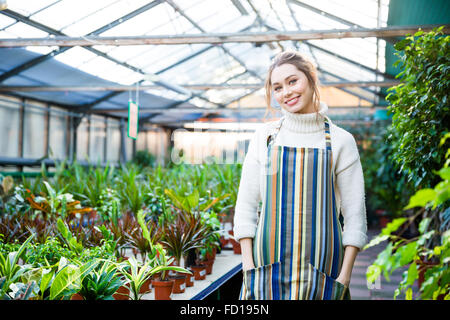 Cheerful beautiful young woman in colorful striped apron standing near different kinds of ficus in flower orangery - Stock Photo