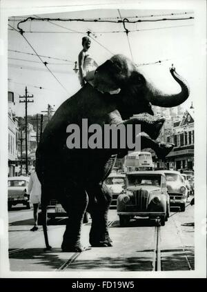 1968 - Some Pedestraian!!: In this era of space travel, nothing seems impossible. Not even the extraordinary spectacle of an elephant on its hind legs crossing a busy road in Rushoutters Bay, Sydney, Australia. Tanya Natashis startled drivers when she piloted the elephant, from Ashton's Circus, through the traffic to find new grazing grounds. © Keystone Pictures USA/ZUMAPRESS.com/Alamy Live News