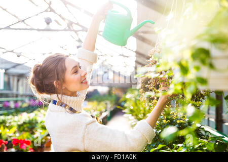 Cheerful attractive young woman gardener in white sweater pouring flowers with green watering can in greenhouse - Stock Photo