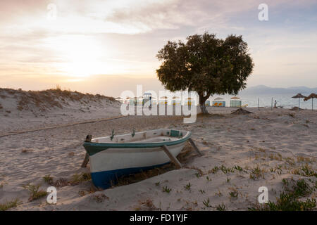 foreground row boat and dominant tree on beach at Marmari, Kos, Greece