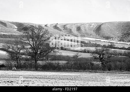 Monochromatic winter landscape over the North Wessex Downs near Devizes Wiltshire UK - Stock Photo