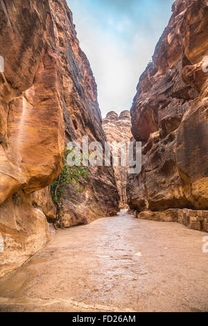 The Siq, the narrow slot-canyon that serves as the entrance passage to the hidden city of Petra, Jordan, - Stock Photo