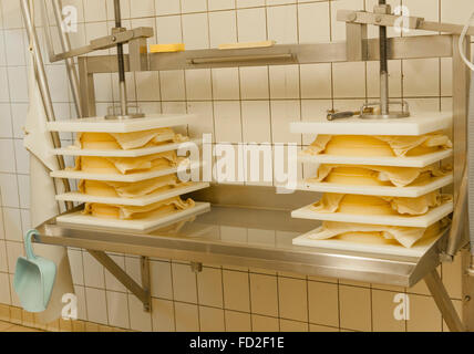 Le Reblochon is an AOC cheese of Le Grand-Bornand in Haute-Savoie, French Alps, France - Stock Photo