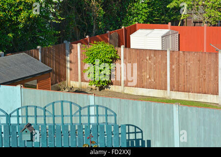 Back garden sheds and panel fence between neighbours with hawthorn hedge beyond - Stock Photo