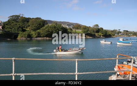 Fisherman in lobster boat leaving the harbour at Schull, West Cork, Ireland. - Stock Photo