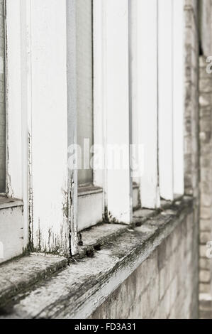 Part of an white painted window frame showing signs of rot and weathering - Stock Photo