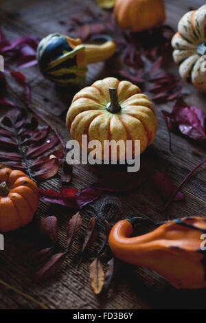Different varieties of pumpkins and Autumn leaves on a rustic wooden table - Stock Photo