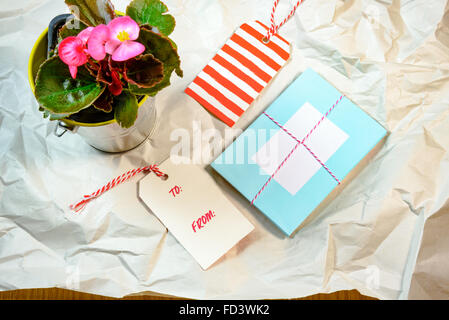 Love cards and Begonia pot on the wrinkle white paper - Stock Photo