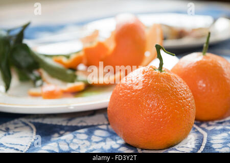 Two  whole ripe clementines of the Sicily on a blue tablecoth - Stock Photo