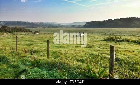 Fence On Grassy Field Against Sky - Stock Photo
