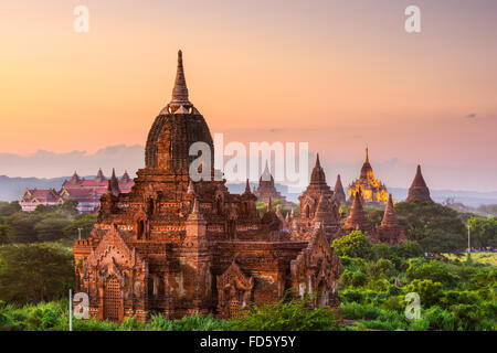 Bagan, Myanmar temples in the Archaeological Park at dusk. - Stock Photo