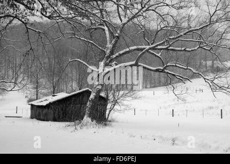 Beautiful picture of an old wooden barn in a snowy field. - Stock Photo