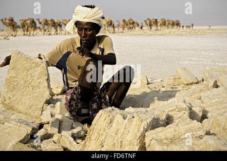 African worker extracting salt from lake Assale, Danakil depression, Afar Region, Ethiopia - Stock Photo