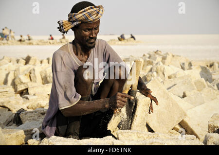 Afar worker extracting salt from lake Assale, Danakil depression, Afar Region, Ethiopia - Stock Photo