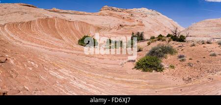 A striking view of layered sandstone near Zebra Slot, along Harris Wash, Grand Staircase-Escalante National Monument, - Stock Photo