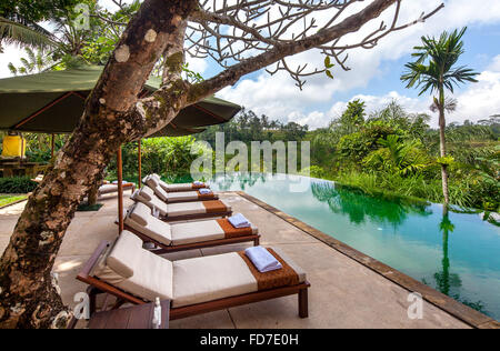 Hotel resort with pool and palm trees, Ubud, Bali, Indonesia, Asia - Stock Photo