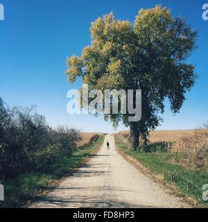 Mid Distant View Of Man Standing On Dirt Road By Tree - Stock Photo