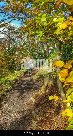 Rear View Of Boy Running On Trail In Forest During Autumn - Stock Photo