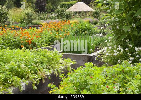 The Kitchen Garden at Rudding Park, North Yorkshire, UK. Summer, July 2015. - Stock Photo