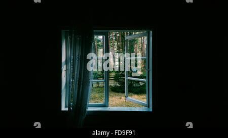 Trees In Yard Seen Through Window - Stock Photo