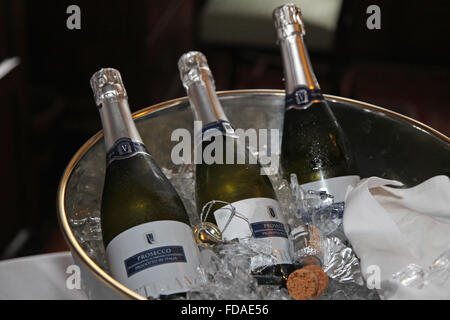 Champagne on ice - Stock Photo