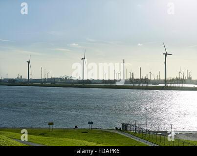 Wind turbines in a industrial area near Rotterdam - Stock Photo