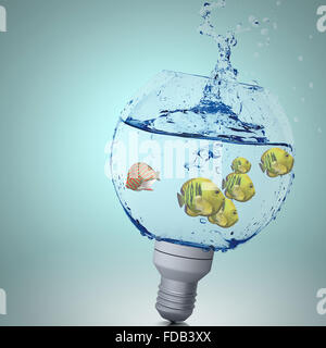 Exotic fish in water inside electric light bulb - Stock Photo