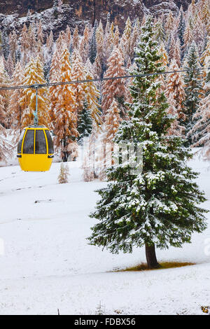 Snowy trees and colorful rail car - Stock Photo