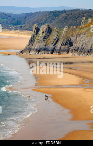 Horses on the beach at Three Cliffs Bay on the Gower Peninsular in South Wales. - Stock Photo