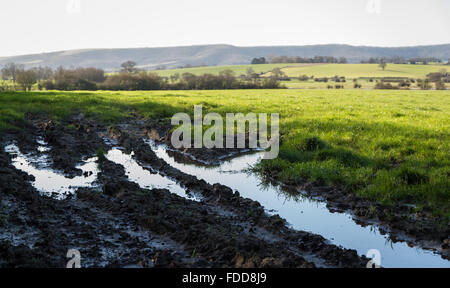 Flood water and mud in tyre tracks in a field on farmland with the south downs hills in the background. - Stock Photo